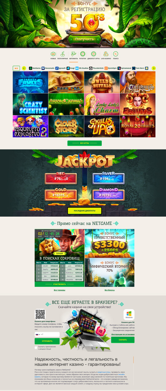 Netgame Casino Screenshot